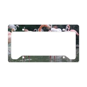 Flamingo Birds License Plate Holder