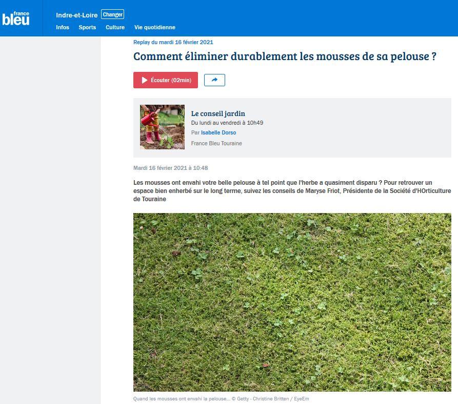 Comment éliminer durablement les mousses de sa pelouse?